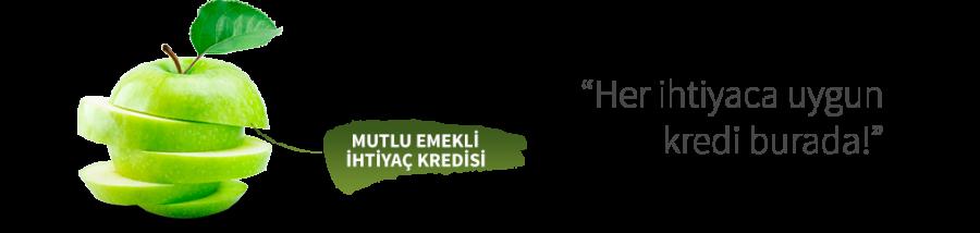 Halkbank'tan emeklilere 100 bin TL'ye kadar 60 ay vade ile İhtiyaç Kredisi